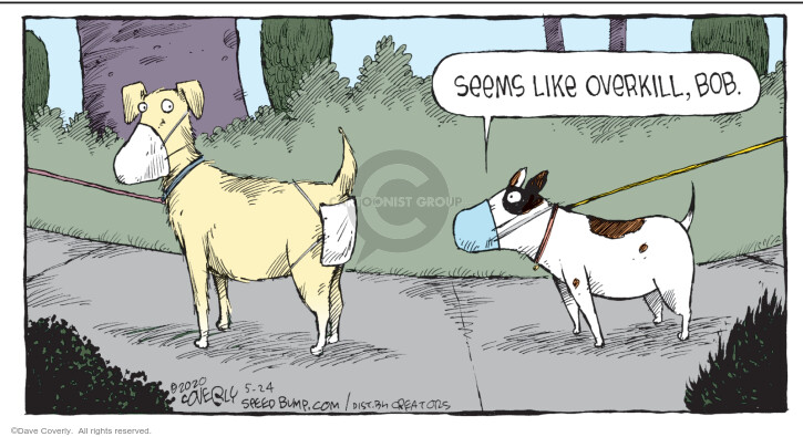 Comic Strip Dave Coverly  Speed Bump 2020-05-24 dog
