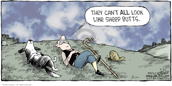 Comic Strip Dave Coverly  Speed Bump 2020-09-27 sheep