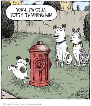 Comic Strip Dave Coverly  Speed Bump 2020-10-12 dog training