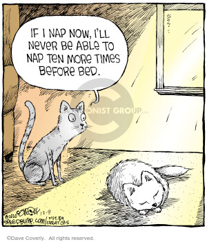 Comic Strip Dave Coverly  Speed Bump 2020-12-09 cat
