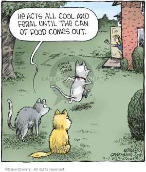 Comic Strip Dave Coverly  Speed Bump 2021-09-07 all