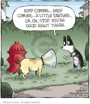 Comic Strip Dave Coverly  Speed Bump 2021-09-10 you
