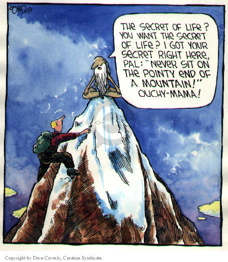 Comic Strip Dave Coverly  Speed Bump 2002-00-00 pointy