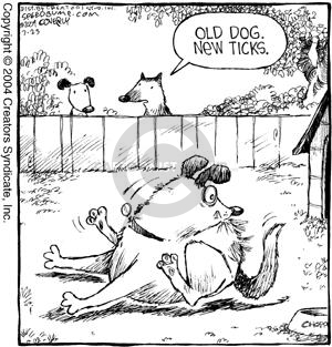Comic Strip Dave Coverly  Speed Bump 2004-07-23 old dog