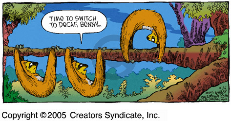 Comic Strip Dave Coverly  Speed Bump 2005-10-16 toe