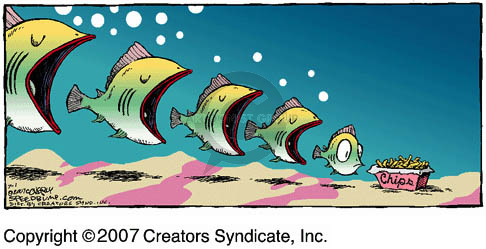 No caption.  (Fish with mouths open are lined up sequentially from largest to smallest.  The smallest fish looks at a container of chips.)