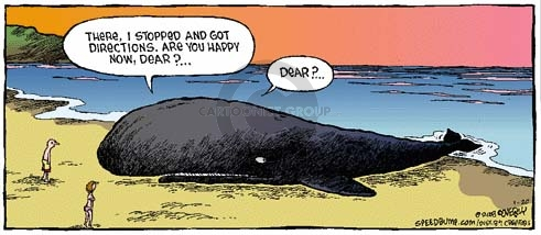 Comic Strip Dave Coverly  Speed Bump 2008-01-20 get