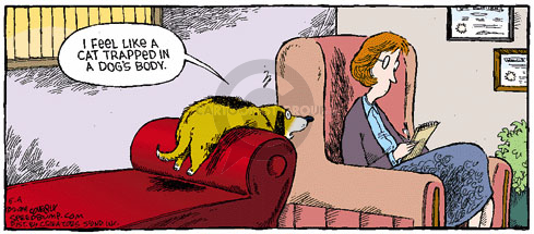 Comic Strip Dave Coverly  Speed Bump 2008-05-04 session