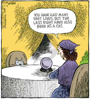 Comic Strip Dave Coverly  Speed Bump 2008-05-13 crystal ball