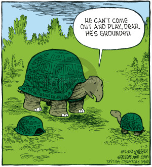 Comic Strip Dave Coverly  Speed Bump 2008-07-03 playmate