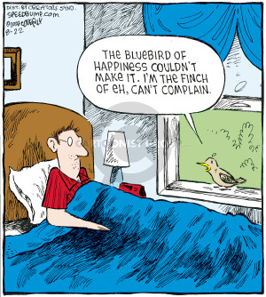 Comic Strip Dave Coverly  Speed Bump 2008-08-22 bluebird
