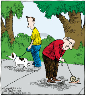 Comic Strip Dave Coverly  Speed Bump 2008-09-20 old dog