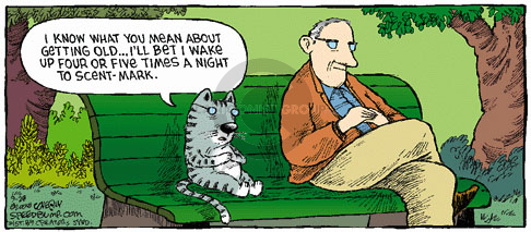 Comic Strip Dave Coverly  Speed Bump 2008-09-28 get old
