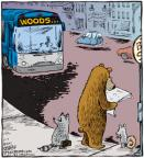 Cartoonist Dave Coverly  Speed Bump 2011-02-07 forest