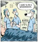 Cartoonist Dave Coverly  Speed Bump 2012-12-27 veterinarian