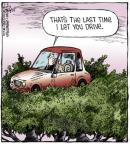 Cartoonist Dave Coverly  Speed Bump 2014-03-06 tree