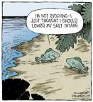 Cartoonist Dave Coverly  Speed Bump 2014-07-17 amphibian