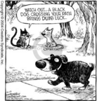 Cartoonist Dave Coverly  Speed Bump 2004-12-14 black cat