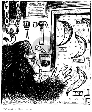 Comic Strip John Deering  Strange Brew 2008-02-20 strange