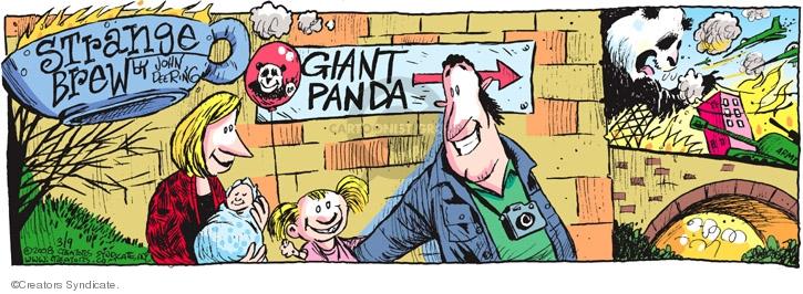 Comic Strip John Deering  Strange Brew 2008-03-02 zoo