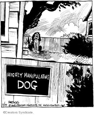 Comic Strip John Deering  Strange Brew 2008-03-24 dog