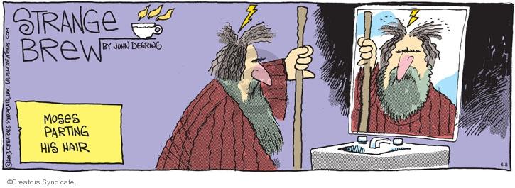 Comic Strip John Deering  Strange Brew 2008-06-08 red