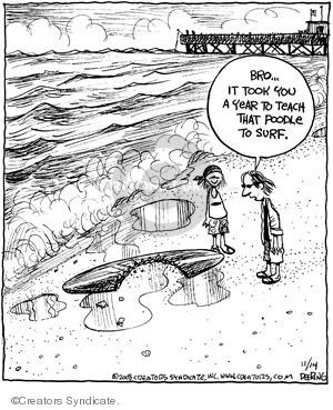 Comic Strip John Deering  Strange Brew 2008-11-14 year