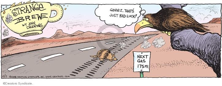 Cartoonist John Deering  Strange Brew 2008-12-07 highway