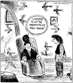 Comic Strip John Deering  Strange Brew 2009-04-27 bird