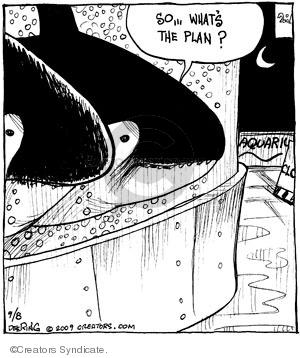 So … Whats the plan? Aquarium. Closed.