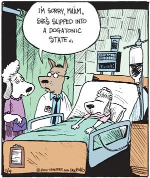 Comic Strip John Deering  Strange Brew 2011-01-04 medical