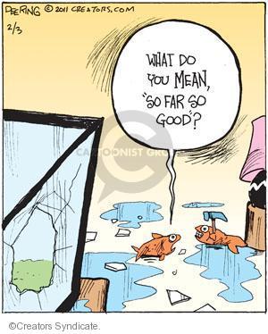 Comic Strip John Deering  Strange Brew 2011-02-03 fish