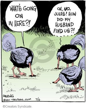 Comic Strip John Deering  Strange Brew 2011-07-06 adulterer