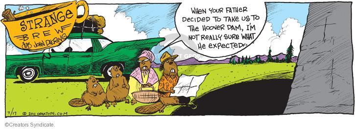 Comic Strip John Deering  Strange Brew 2011-07-17 expectation