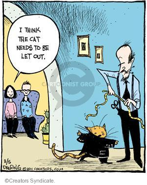 Comic Strip John Deering  Strange Brew 2011-08-05 indoor cat