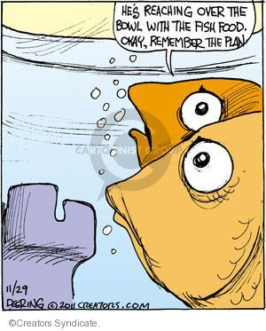Comic Strip John Deering  Strange Brew 2011-11-29 fish