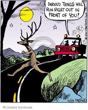 Comic Strip John Deering  Strange Brew 2011-12-13 wildlife