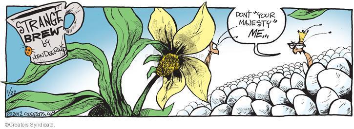 Comic Strip John Deering  Strange Brew 2012-01-22 egg