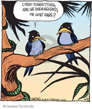Comic Strip John Deering  Strange Brew 2012-06-04 environment