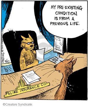 Comic Strip John Deering  Strange Brew 2012-09-27 cat insurance