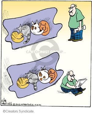 Comic Strip John Deering  Strange Brew 2012-11-08 cat nap