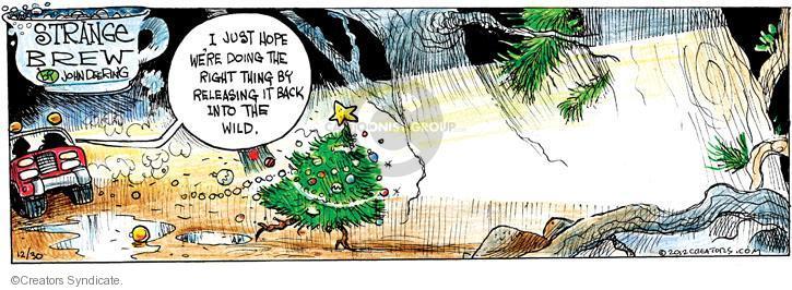 Comic Strip John Deering  Strange Brew 2012-12-30 wild