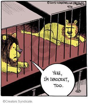 Comic Strip John Deering  Strange Brew 2013-04-16 lion
