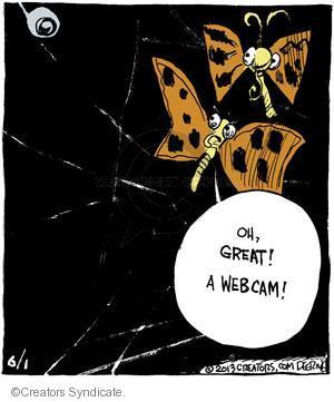 Comic Strip John Deering  Strange Brew 2013-06-01 catch