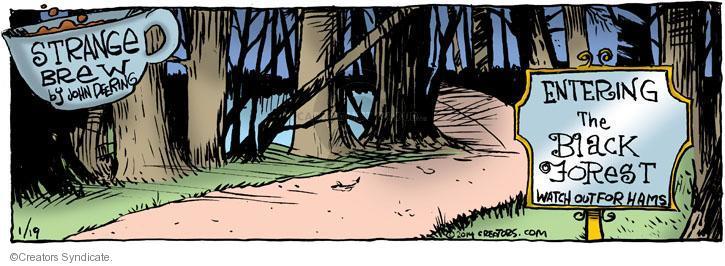 Comic Strip John Deering  Strange Brew 2014-01-19 black