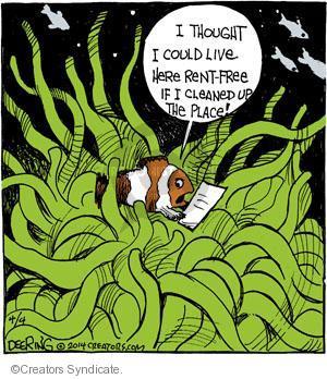 Comic Strip John Deering  Strange Brew 2014-04-04 fish