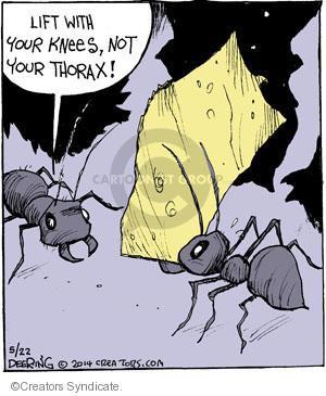 Comic Strip John Deering  Strange Brew 2014-05-22 your