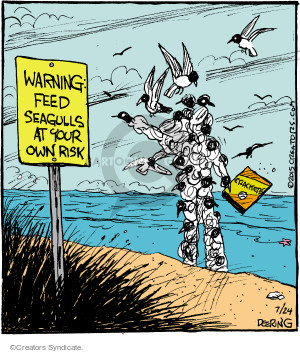 Warning. Feed seagulls at your own risk. Crackers.