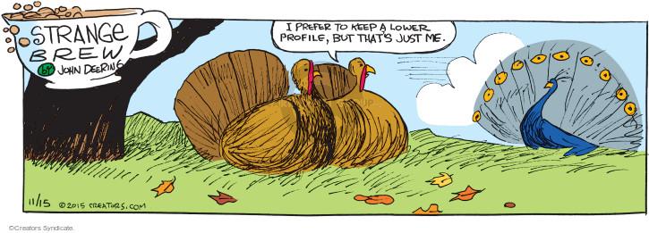 Comic Strip John Deering  Strange Brew 2015-11-15 turkey bird