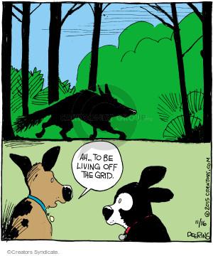 Comic Strip John Deering  Strange Brew 2015-11-16 domestication